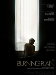 Vidas que se Cruzam (The Burning Plan)