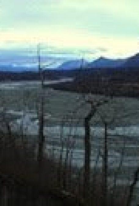 Crítica: O Voo de Tulugaq