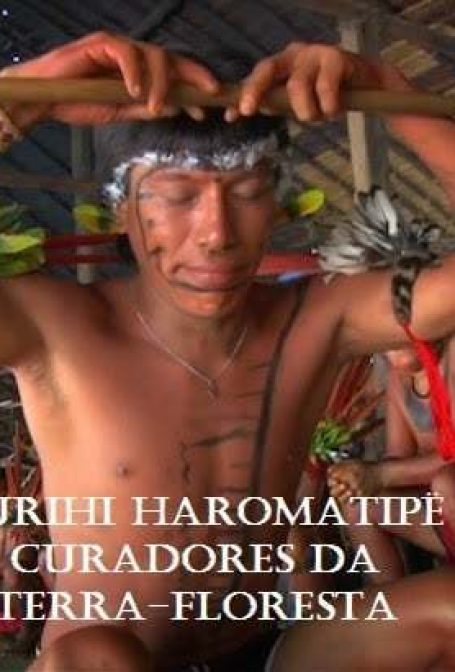 Crítica: Urihi Haromatipë – Curadores Da Terra-Floresta