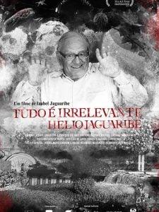 Crítica: Tudo é Irrelevante, Hélio Jaguaribe