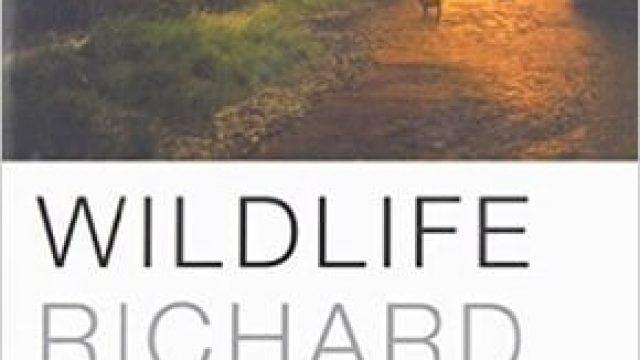 Vida Selvagem