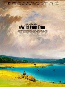 Cannes 2018: The Wild Pear Tree