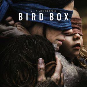 Crítica: Bird Box