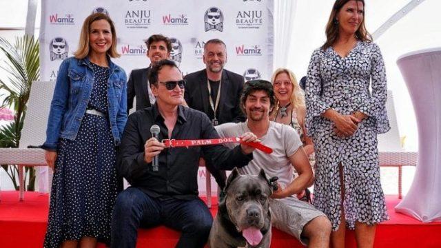 Festival de Cannes | Palm Dog 2019: Prêmio dos Cães