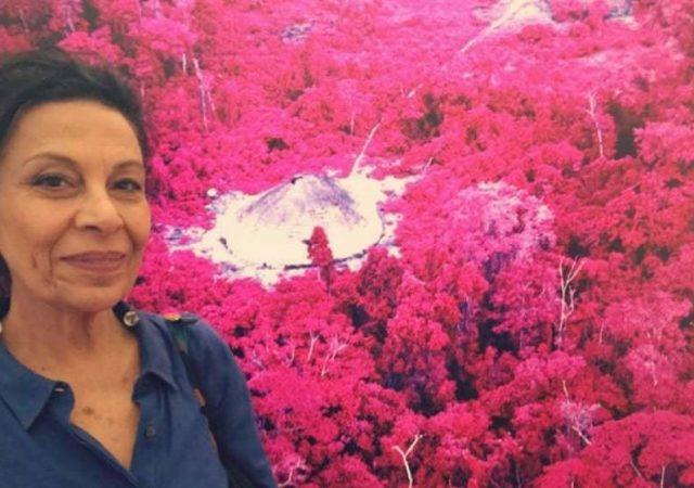 Entrevistamos a diretora Regina Jehá