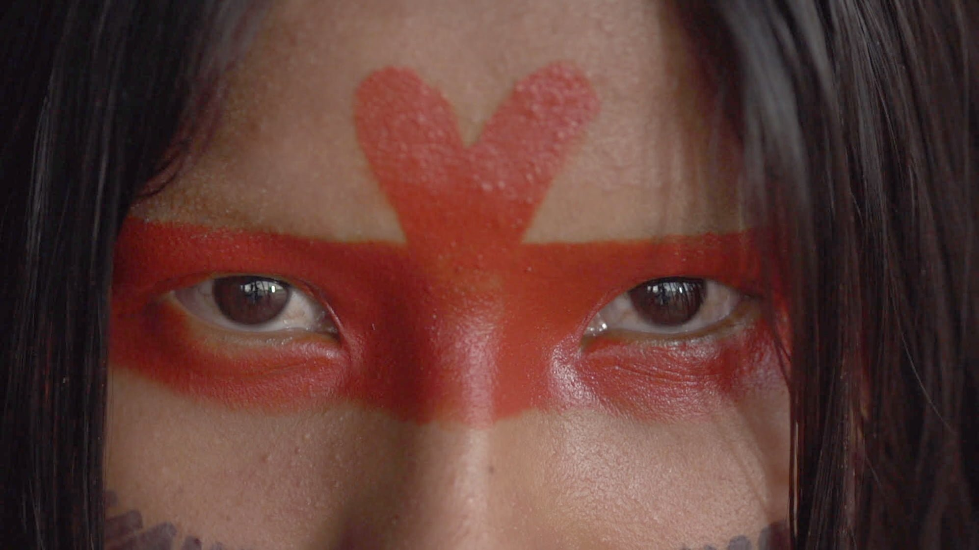 Amazonia Sociedade Anonima