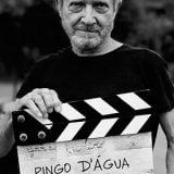 Pingo D'agua