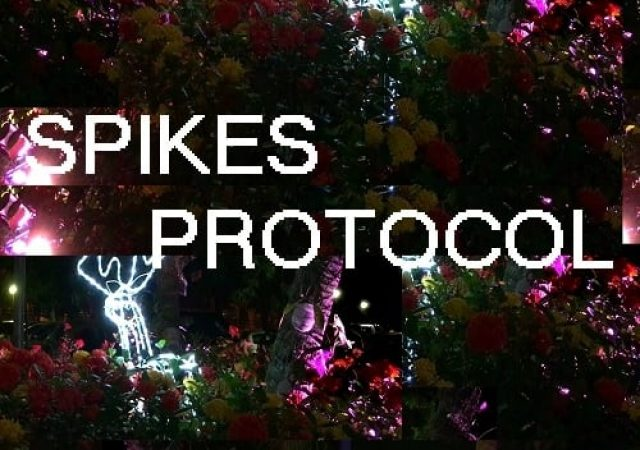 Protocolo Spikes
