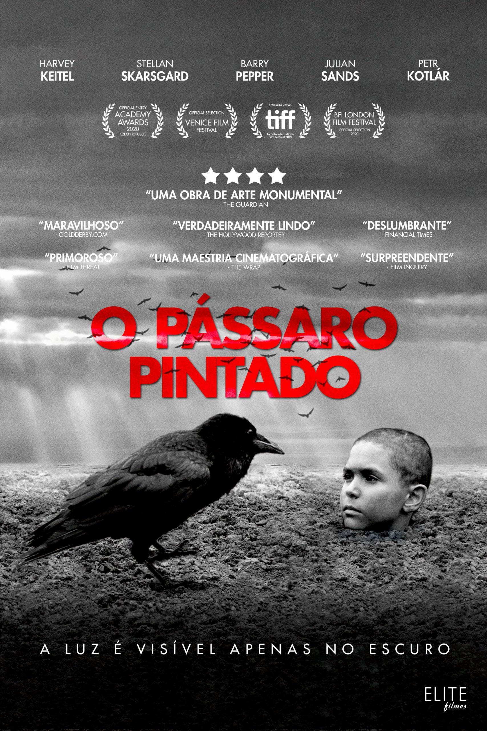 O Pássaro Pintado