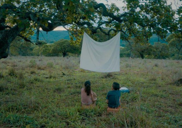 Tudo Sobre o Festival de Cinema de Vitória 2020