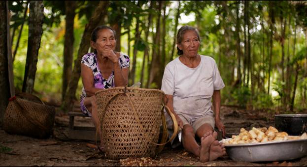 Nheengatu - A língua da Amazônia