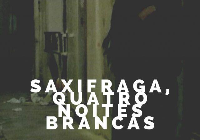 Saxifraga, Quatro Noites Brancas